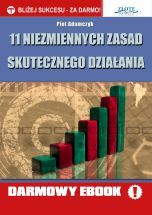 książka 11 niezmiennych zasad skutecznego działania (Wersja elektroniczna (PDF))
